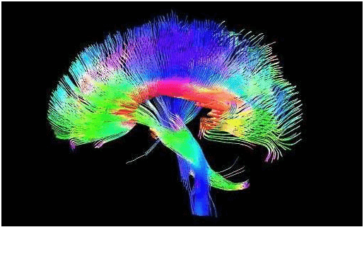 Diffusion tensor imaging of the brain